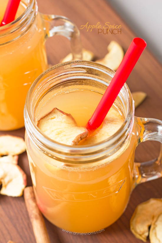 Apple Spice Punch