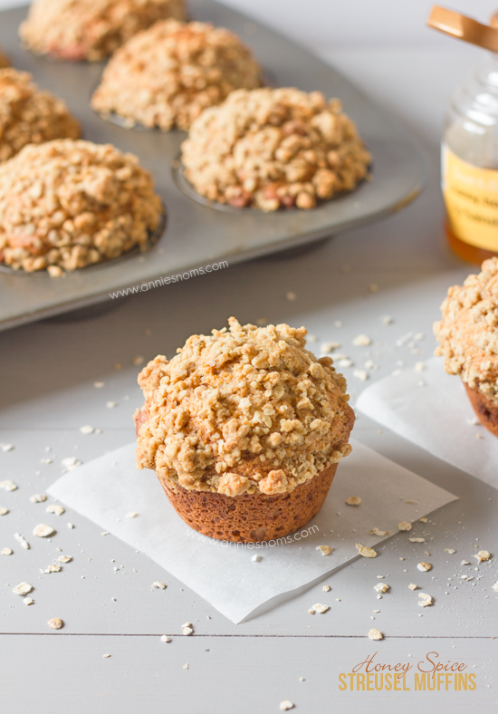 Honey Spice Streusel Muffins | Annie's Noms - These Honey Spice Streusel Muffins are just perfect for your breakfast! Soft, sweet and spicy with the added crunch of a streusel topping. Yoghurt makes these muffins tender and soft, whilst the honey sweetens and adds a tang which is perfectly complimented by the spices; an Autumnal taste sensation!