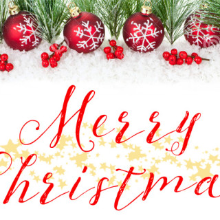 Wishing you a very Merry Christmas!