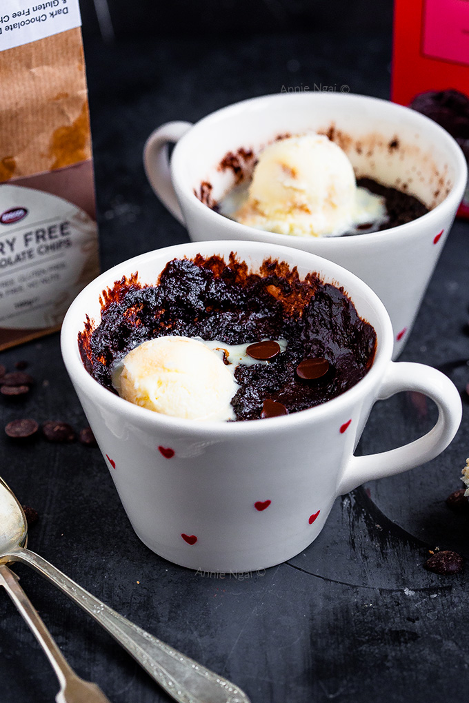 This Brownie in a Mug is dairy free and ready in under 5 minutes! Super rich, fudgy and decadent, it is the perfect single serving dessert!